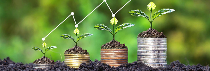 Le profil dynamique d'un placement financier